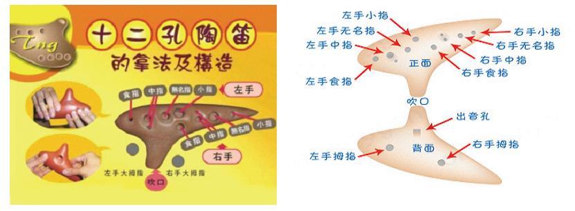 十二孔陶笛指法 高清图片
